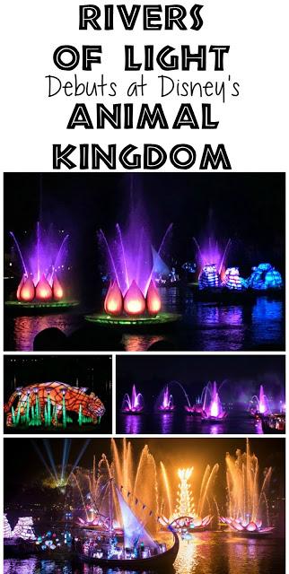 Rivers of Light, Rivers of Light Animal Kingdom, Animal Kingdom Shows