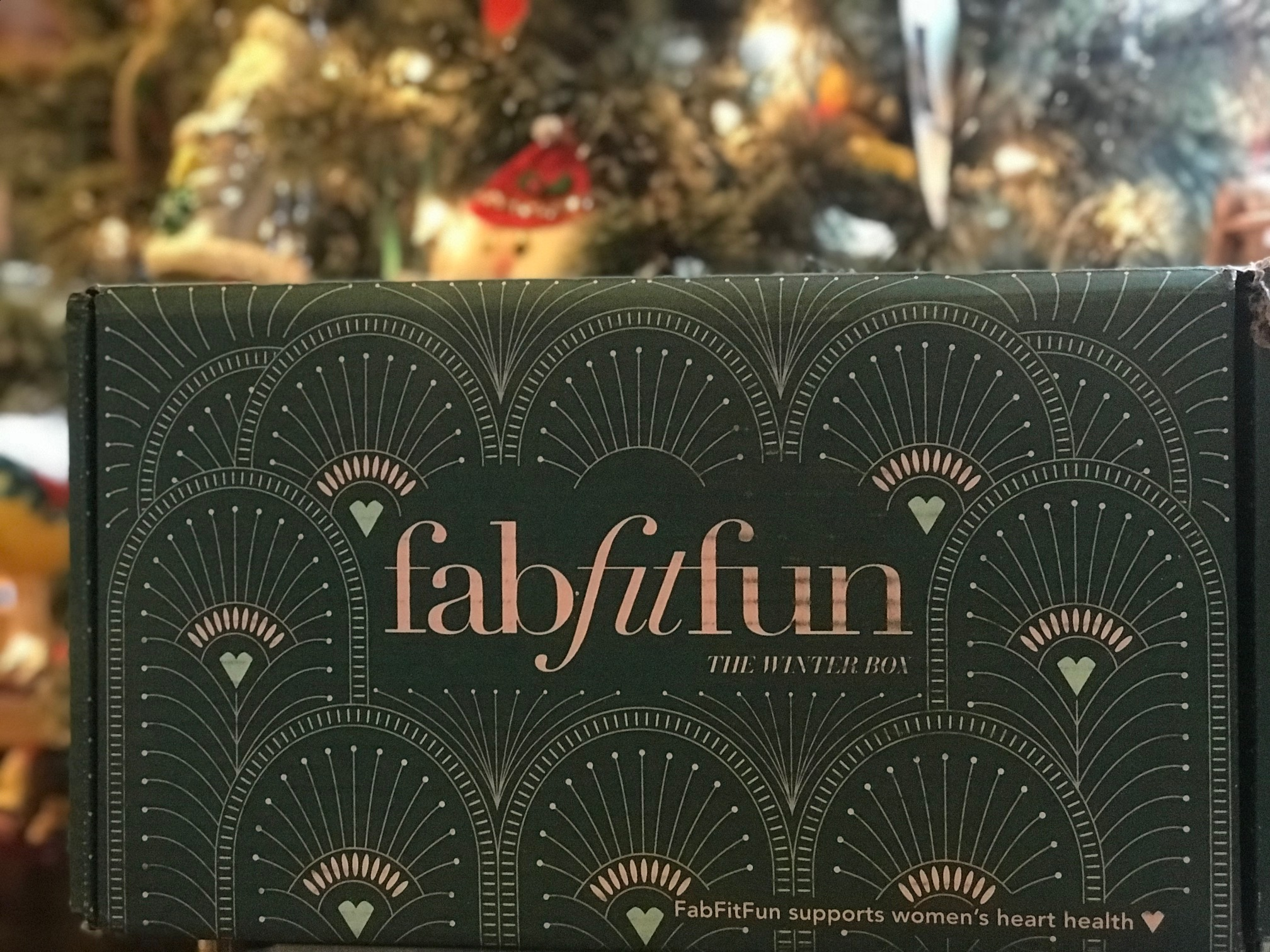 FabFitFun Winter Box