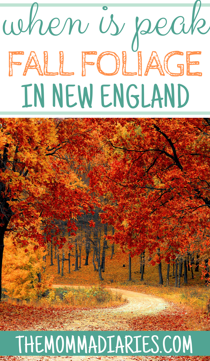 When is Peak Fall Foliage in New England