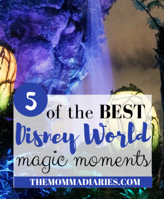 Disney World Magic Moments