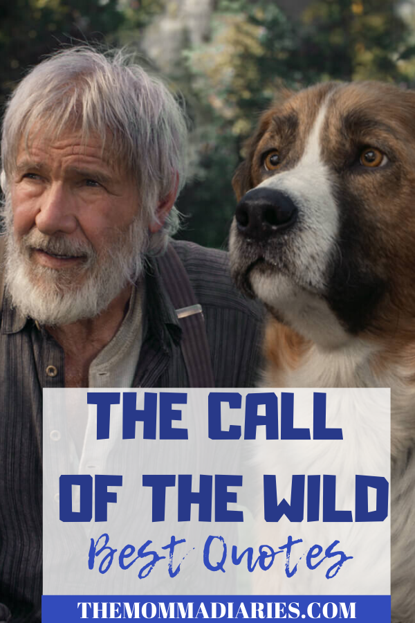 Best Call of the Wild movie quotes #CallofTheWild #AnswerTheCall